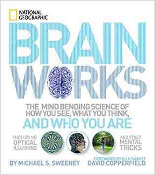 Brainworks: