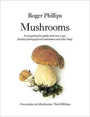 """Mushrooms"""""""