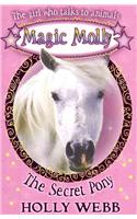 Secret Pony