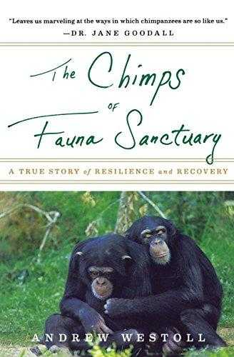 The-Chimps-of-Fauna-Sanctuary:-A-True-Story-of-Resilience-and-Recovery
