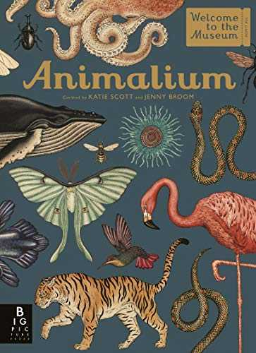 Animalium-(Welcome-To-The-Museum)