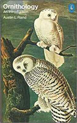 Ornithology-by-Austin-L.-Rand-Paperback